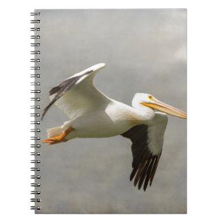 Pelican In Flight Notebook