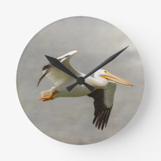 Pelican In Flight Round Clock