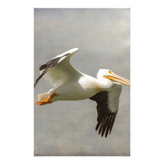 Pelican In Flight Stationery