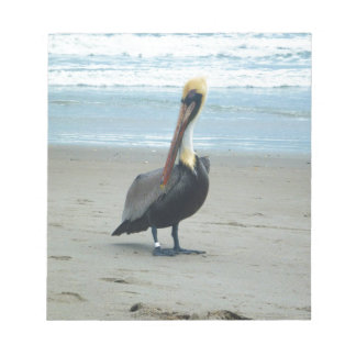 Pelican in Florida Notepad