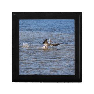 Pelican Landing Gift Box