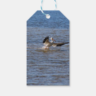 Pelican Landing Gift Tags