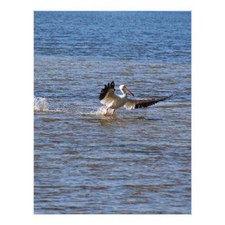 Pelican Landing Letterhead