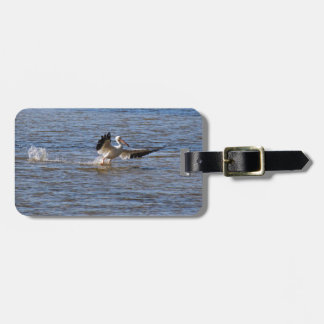 Pelican Landing Luggage Tag