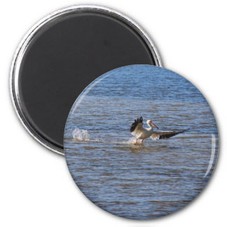 Pelican Landing Magnet
