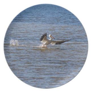 Pelican Landing Plate