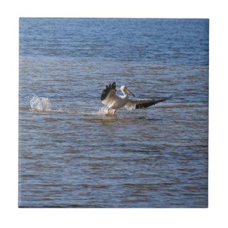Pelican Landing Tile
