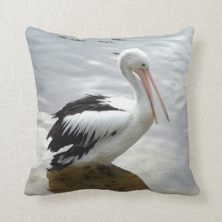 Pelican on a Pillow