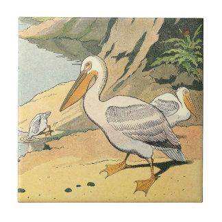 Pelican on the Beach Tile