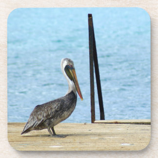 Pelican on the pier, Curacao, Caribbean Islands Drink Coasters