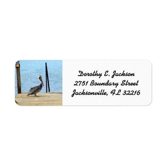 Pelican on the pier, Curacao, Photo Return Address