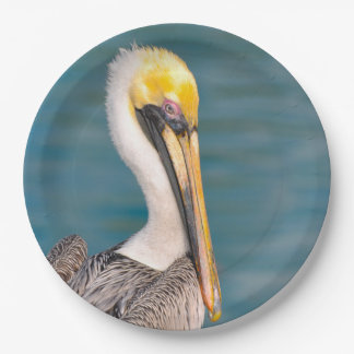 Pelican Portrait Close Up with Ocean in Background Paper Plate