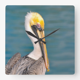 Pelican Portrait Close Up with Ocean in Background Square Wall Clock
