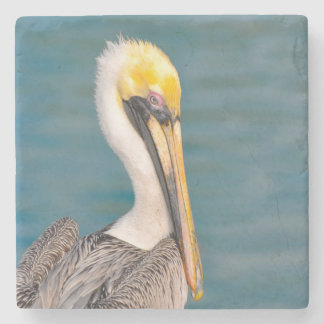 Pelican Portrait Close Up with Ocean in Background Stone Coaster
