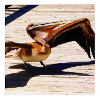 Pelican Print, Wall Art, Gifts, Acrylic Print