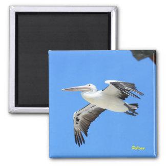 Pelican Square Magnet