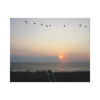 pelicans at sunrise in Outer Banks Stretched Canvas Prints