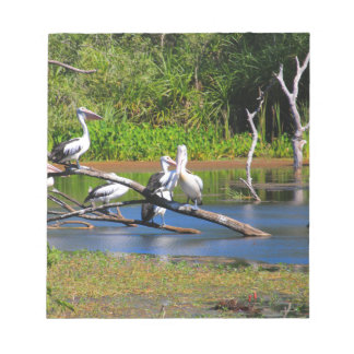 Pelicans in wetlands, Outback Australia Notepad