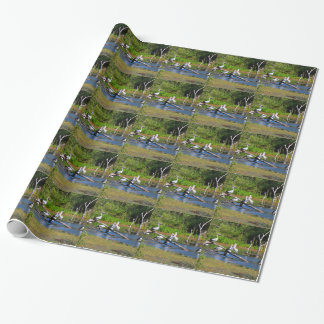 Pelicans in wetlands, Outback Australia Wrapping Paper