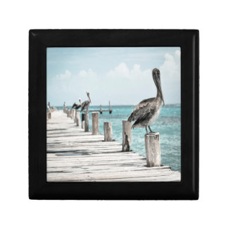 Pelicans Jewelry Keepsake Box