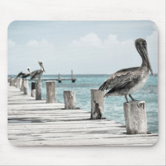 Pelicans on Dock Mouse Pad