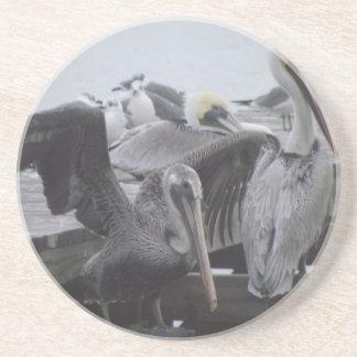 Pelicans on Pier Coasters