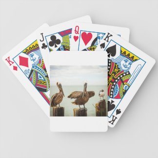Pelicans perched on posts bicycle playing cards