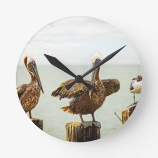 Pelicans perched on posts round clock