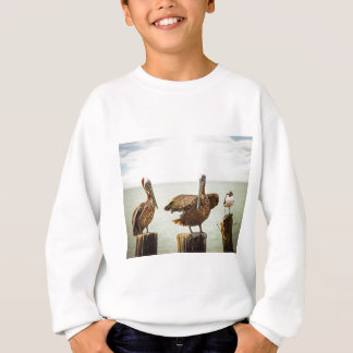 Pelicans perched on posts sweatshirt