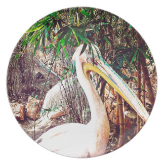 pelicans plate