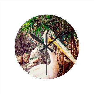 pelicans round clock