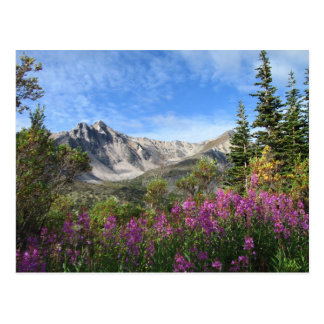 Pelly Mountain Vista Postcard