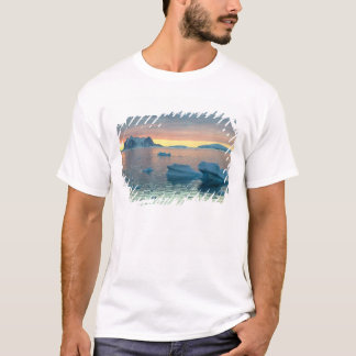 Peltier Channel in the last light of the day T-Shirt