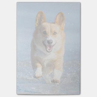 Pembroke Welsh Corgi Dog Running On The Beach Post-it® Notes
