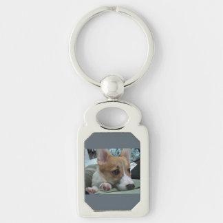 pembroke welsh corgi puppy 2 keychain