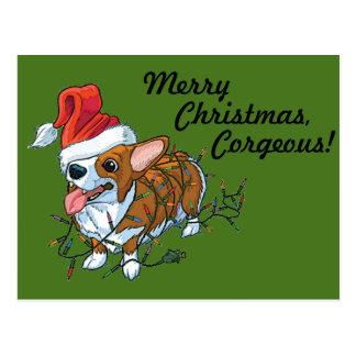 Pembroke Welsh Corgi Puppy Christmas Xmas Lights Postcard