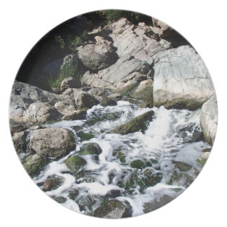 Penasquitos Waterfall Party Plate