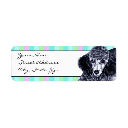 Pencil Poodle