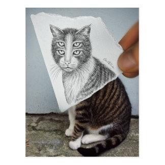 Pencil Vs Camera - 4 Eyes Cat Postcards