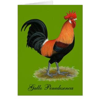 Penedesenca Rooster Card