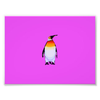 Penguin Art Photo