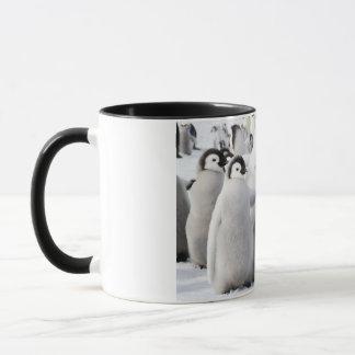 Penguin Buddies mug