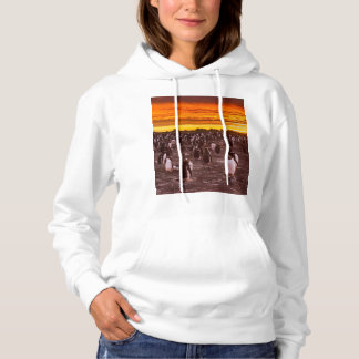 Penguin colony at sunset, Falkland Hoodie