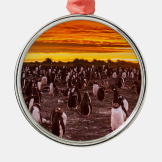 Penguin colony at sunset, Falkland Silver-Colored Round Ornament