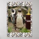 Penguin Concert Poster