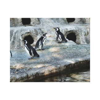 Penguin Flock Gallery Wrapped Canvas