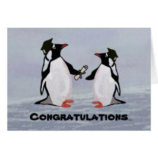 Penguin Graduation Cards