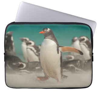 Penguin group on beach, Falklands Laptop Computer Sleeves