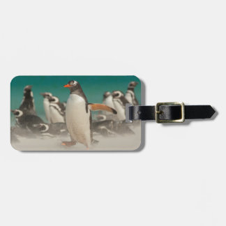 Penguin group on beach, Falklands Luggage Tag