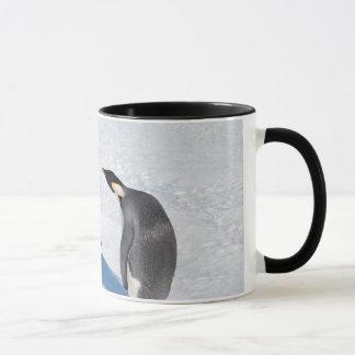 Penguin Paparazzi mug